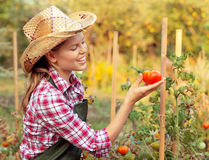 Woman gardener Stock Images