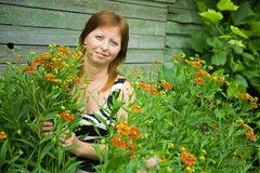 Woman gardener with  Helenium Stock Photography