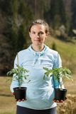 Woman gardener holding her tomato seedlings prepared to be planted on her garden. Organic gardening, healthy food, self-supply and housework concept stock images