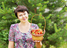 Woman-gardener holds a basket with red strawberry Royalty Free Stock Photos