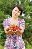 Woman-gardener holds large and ripe strawberry Stock Images