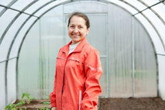 Woman gardener in  hothouse Royalty Free Stock Images
