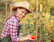 Woman gardener Stock Photo