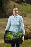 Woman gardener showing seedlings collection prepared to be planted on garden royalty free stock photos