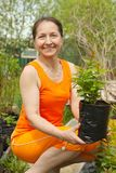 Woman gardener with sprouts Stock Photography