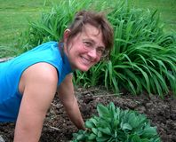 Woman Gardener working with her plants. In a flower bed stock image