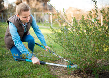 Woman gardener working in the spring garden and trimming branches royalty free stock photos