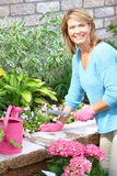 Woman gardening. Smiling happy  woman gardening near the home Royalty Free Stock Photos