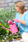 Woman gardening. Smiling happy  woman gardening near the home Stock Image