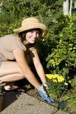 Woman Gardening Royalty Free Stock Image