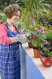 Woman gardening Royalty Free Stock Image