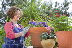 Woman gardening Royalty Free Stock Photography