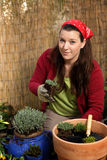 Woman gardening -poting some plants Royalty Free Stock Image