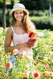 Woman gardening with roses Stock Photos