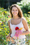Woman gardening with roses Royalty Free Stock Photography