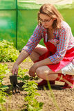 Woman with gardening tool working in garden Royalty Free Stock Photography