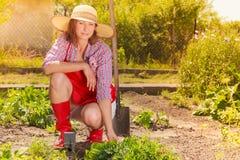 Woman with gardening tool working in garden Stock Photos