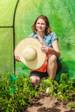 Woman with gardening tool working in greenhouse Royalty Free Stock Image