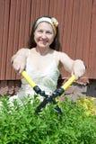 Woman gardening in yard Stock Photography