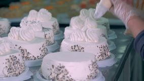 A confectioner puts whipped cream on cakes, close up. stock video footage