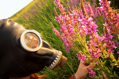 Woman with gas mask looking flowers Stock Image