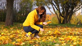 Woman gather bright maple leaves in yellow bunch. Woman gather bright maple leaves in colourful yellow bunch stock video
