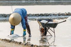A woman gathers salt at the Hon Khoi salt fields in Nha Trang, V Stock Image