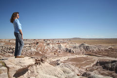 A Woman Gazes at Petrified Forest Stock Photo