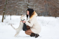Woman with a gentle husky puppy Royalty Free Stock Image