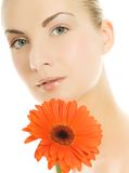Woman with gerber flower Stock Images
