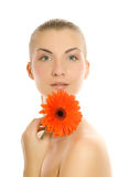 Woman with gerbera flower Royalty Free Stock Photography