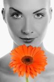 Woman with gerbera flower Stock Photos