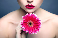 Woman with gerbera pink lipstick. Woman holding gerbera pink lipstick spa beauty Royalty Free Stock Image