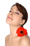 Woman with gerbera on shoulder Stock Images