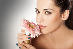 Woman with gerbera. Young beautiful woman enjoying the scent of the flower gerbera royalty free stock photos