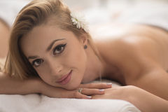 Woman getting back massage in spa salon Stock Photography