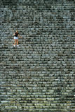 Woman getting down Pyramid of Cichen Itza, Mexico Stock Photography