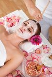 Woman getting facial mask at spa studio Royalty Free Stock Images