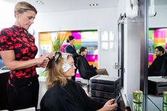 Woman Getting Her Hair Colored In Beauty Salon Stock Photography