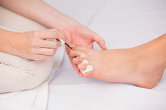 Woman getting a pedicure from beautician Stock Photography
