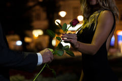 Woman getting rose on first date. Woman getting rose on the first date Stock Photos