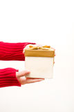 Woman with a gift box in hands Royalty Free Stock Image