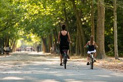 A woman and a girl biking in the Amsterdam Vondelpark royalty free stock image