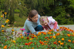Woman with a girl among the flowers Stock Photography