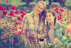 Woman and girl holding a basket and standing near blooming ros royalty free stock photo