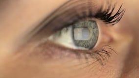 Woman girl macro eye looking monitor, surfing stock video