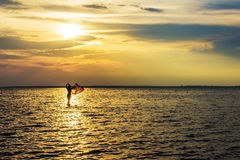 Woman girl walking in the sea at sunset, dawn Stock Photos
