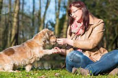 Woman gives dog a treat and gets the paw Stock Image