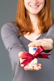 Woman giving money Stock Photography