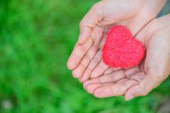 Woman giving red heart on green grass background royalty free stock photos
